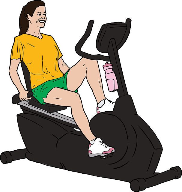 Best Recumbent Bike for Seniors for a Comfortable Workout
